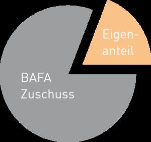 e-eff_unternehmen_energieberatung_bafa_zuschuss